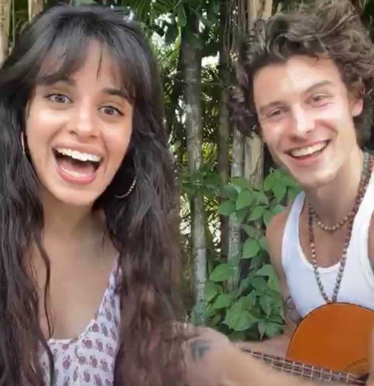 Camila Cabello and Shawn Mendes #togetherathome