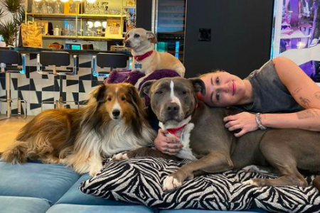 Miley Cyrus and her three dogs Emu, Bo Cyrus and Angel lounging on some cushions.